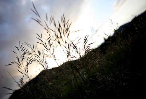 blog_Boulder_6419